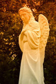 Statue of crying angel in sunset rays — Stock Photo