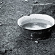 An old basin full of water standing on the ground. Black and whi — Stock Photo