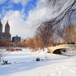 Stock Photo: New York City Manhattan Central Park panorama in winter