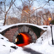 New York City Manhattan Central Park in winter — Stock Photo