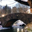 New York City Manhattan Central Park in winter - Stock Photo