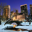 New York City Manhattan Central Park panorama at dusk - Stock Photo