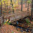 Autumn Bridge — Stock Photo