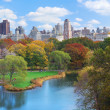 new york city manhattan central park — Foto Stock