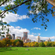 New York City Central Park with cloud and blue sky — Stock Photo