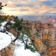 Grand Canyon panorama view in winter with snow — Foto Stock