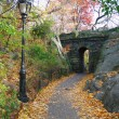 New York City Central park Stone bridge - Stock Photo