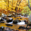 Autumn foliage and creek — Stock Photo