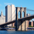 Brooklyn Bridge New York City — Foto de Stock