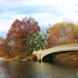 New York City Manhattan Central Park panorama at Autumn — Stock Photo #5566824