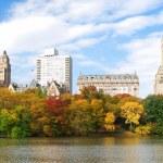 New York City panorama — Stock Photo #5566831