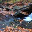 Autumn creek panorama - Stock Photo