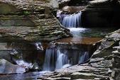 Closeup creek — Foto de Stock