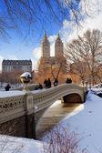 Nowym Jorku manhattan central parku panorama w zimie — Zdjęcie stockowe