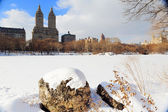 Parque central de nueva york manhattan en invierno — Foto de Stock