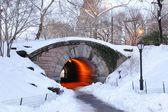 New York City Manhattan Central Park in winter — Stock Photo