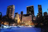 纽约曼哈顿中央公园全景 — 图库照片