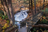 Autumn creek with hiking trail — Stock Photo