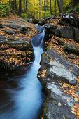 Jesień creek — Zdjęcie stockowe