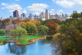 Central park in new york city manhattan — Stockfoto