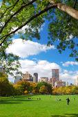 ニューヨーク市セントラル ・ パーク — ストック写真