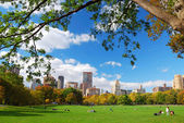 Central park in new york city mit wolken und blauer himmel — Stockfoto
