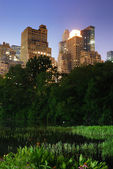 New york city central park — Stock fotografie