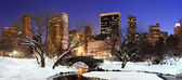 New York City Manhattan Central Park panorama at dusk — Stock Photo