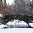 New York City Manhattan Central Park panorama at dusk — Stock Photo