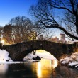 Stock Photo: New York City Central Park bridge in winter