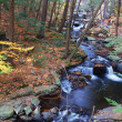 Постер, плакат: Autumn creek with hiking trails and foliage