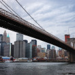 New York City skyline with Brooklyn bridge — Stock Photo #5593826