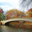 New York City Manhattan Central Park panorama at Autumn — Stok fotoğraf