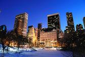 Panorama de parque central de manhattan nueva york en invierno — Foto de Stock