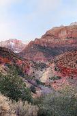 Zion nationalpark — Stockfoto