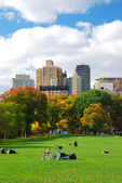 New York City Central Park skyline — Stock Photo
