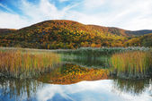 Autumn Mountain with lake — Stock Photo