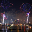 spectacle de feux d'artifice de New york city — Photo