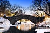 New york'taki central park köprü kış — Stok fotoğraf