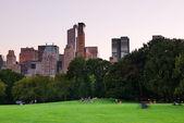 New york'taki central park alacakaranlıkta panorama adlı — Stok fotoğraf