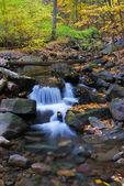 Creek närbild — Stockfoto