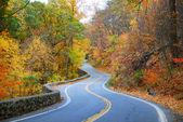 Kleurrijke kronkelende herfst weg — Stockfoto