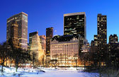 New york city manhattan central park panorama in inverno — Foto Stock