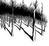 Forest edge. — Stockvector