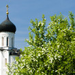 Church of the Intercession on the Nerl - Stock Photo