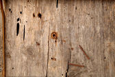 Closeup of old rustic wood texture — Stock Photo