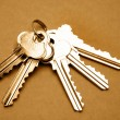 Stock Photo: Five steel door keys still life