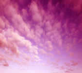 Purple and pink colors in sunset sky — Stock Photo