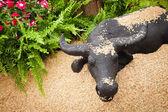 Paddy display com verde e búfalo — Fotografia Stock