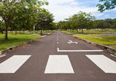 Zebra traffic walk way with blue sky — Stok fotoğraf
